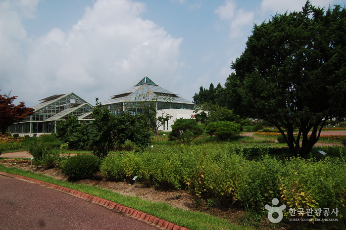 Gangwon-do Provincial Flower Garden (강원도립화목원)