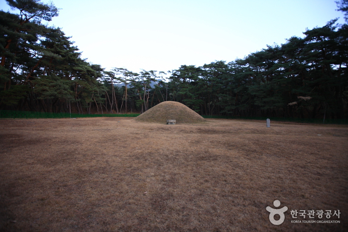 경주 경애왕릉