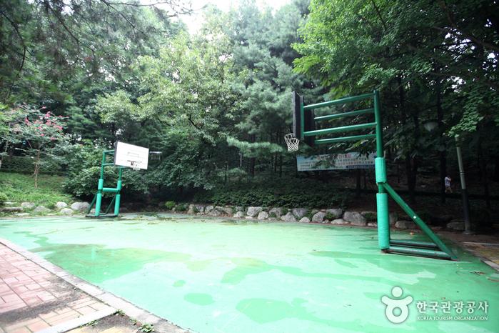 Cheongdam-Park (청담공원)