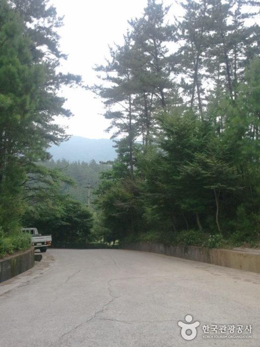 Baegunsan Mountain (Gwangyang) (백운산 - 광양)