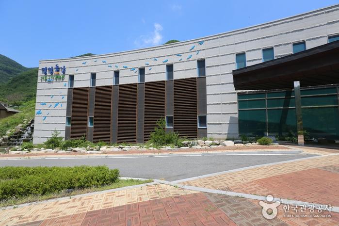 Centre écologique du poisson d'eau douce de Pyeongchang Donggang (평창동강민물고기생태관)