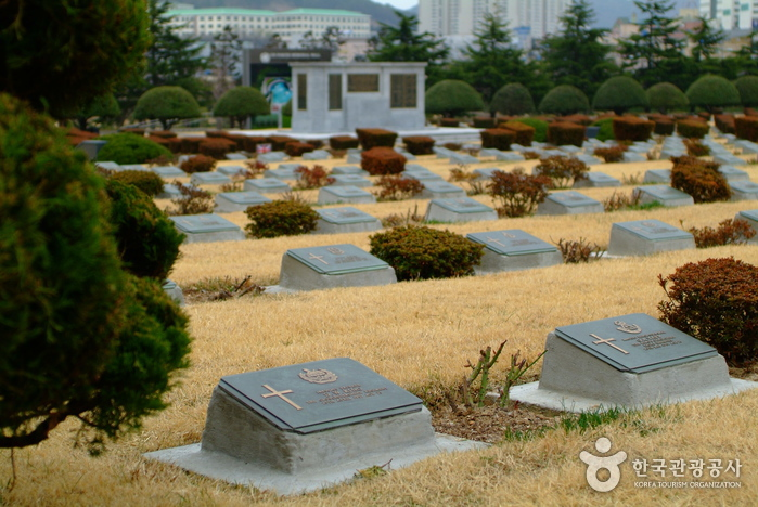 UN Memorial Cemetery in Korea (재한유엔기념공원)
