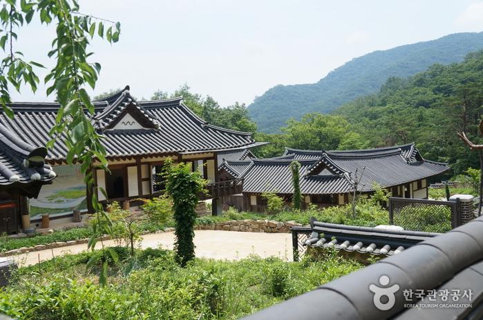 順天伝統野生茶体験館(순천 전통야생차체험관)