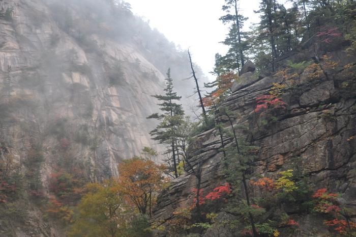 Cheonbuldonggyegok Valley (천불동계곡)
