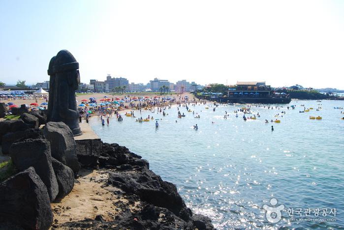 함덕 서우봉 해변