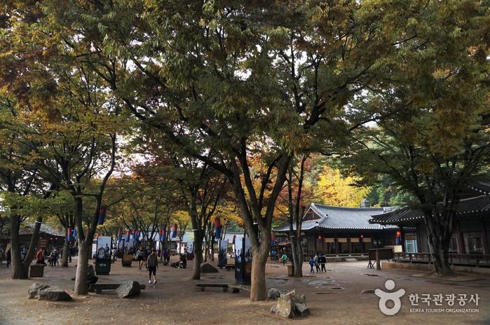 Корейская традиционная деревня Минсокчхон (한국민속촌)