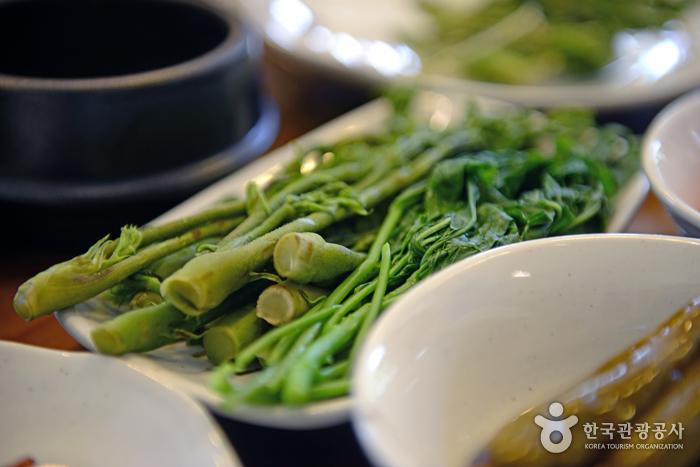 봄 향기 가득한 쌉싸래한 철원의 맛, 철원 음나무순 축제 사진