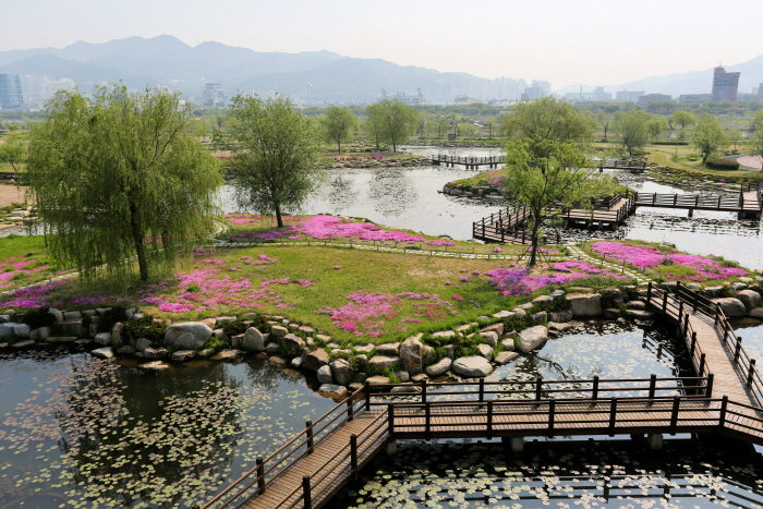 Samnak Ecological Park (삼락생태공원)