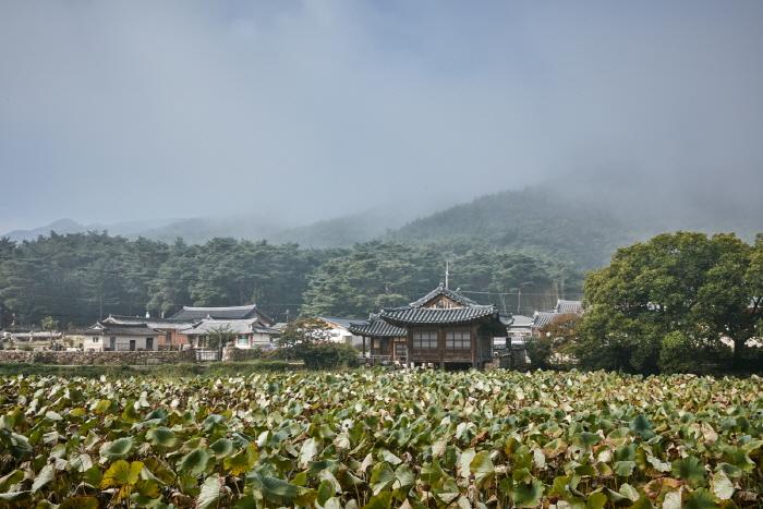 慶州 書出池(경주 서출지)