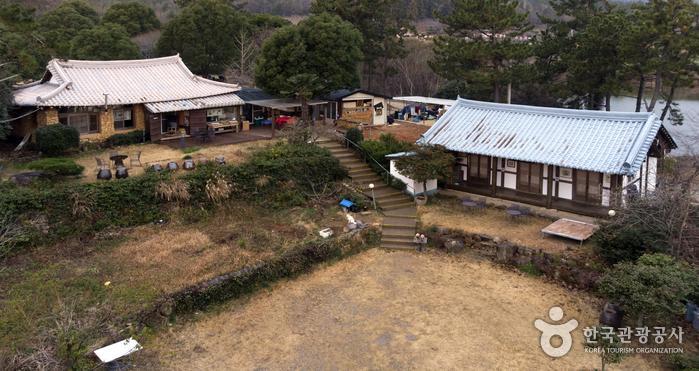 薛芽茶園[韓国観光品質認証](설아다원[한국관광 품질인증/Korea Quality])
