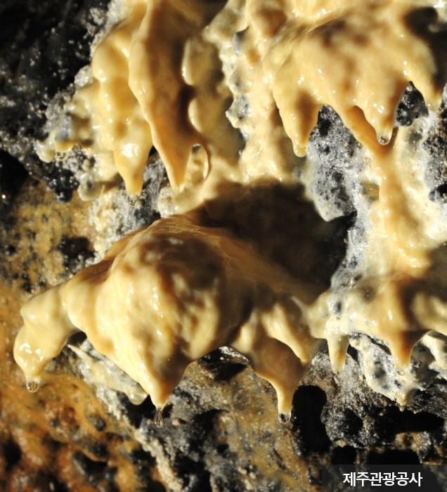 龍泉洞窟[ユネスコ世界自然遺産](용천동굴 [유네스코 세계자연유산])