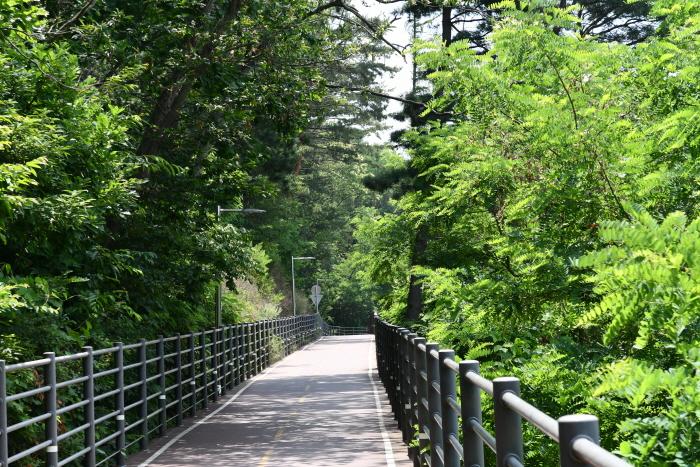 춘천 의암호 자전거길(물레길)