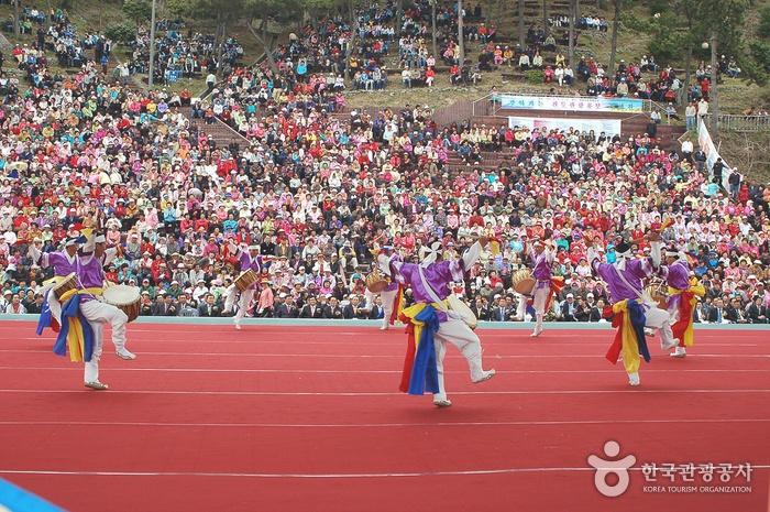 Jindo Miracle Sea Festival (진도 신비의바닷길축제)
