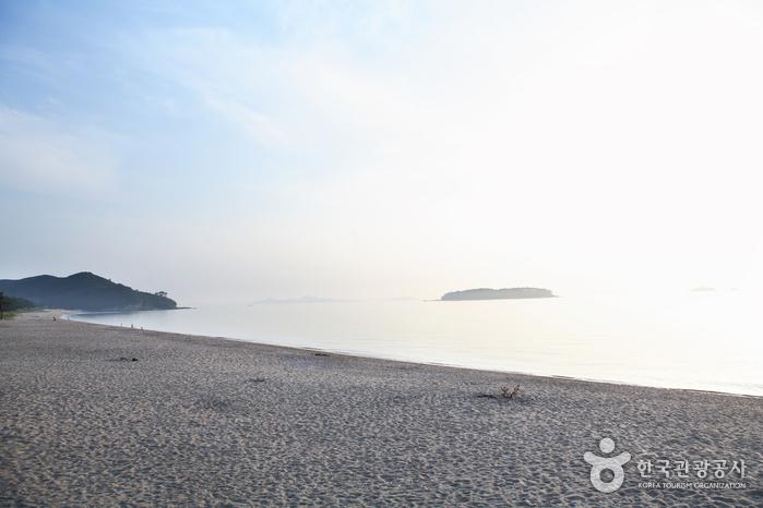 Gosapo Beach (고사포해변)