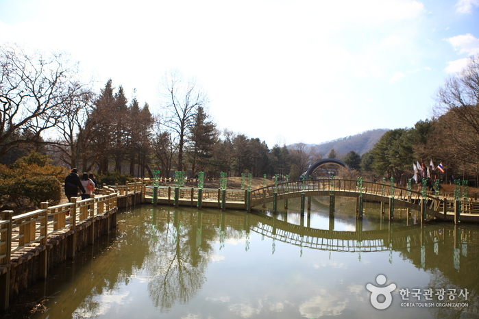 Centro Recreativo de Namiseom (남이섬 종합휴양지)