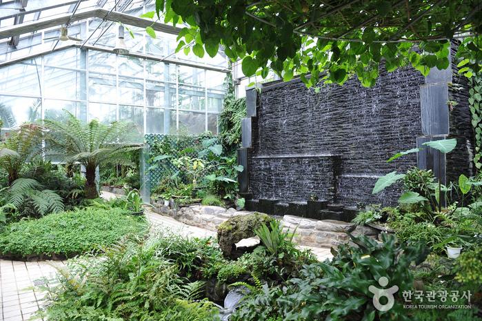 Korea Expressway Corporation Arboretum (Jeonju Arboretum) (한국도로공사수목원(전주수목원))