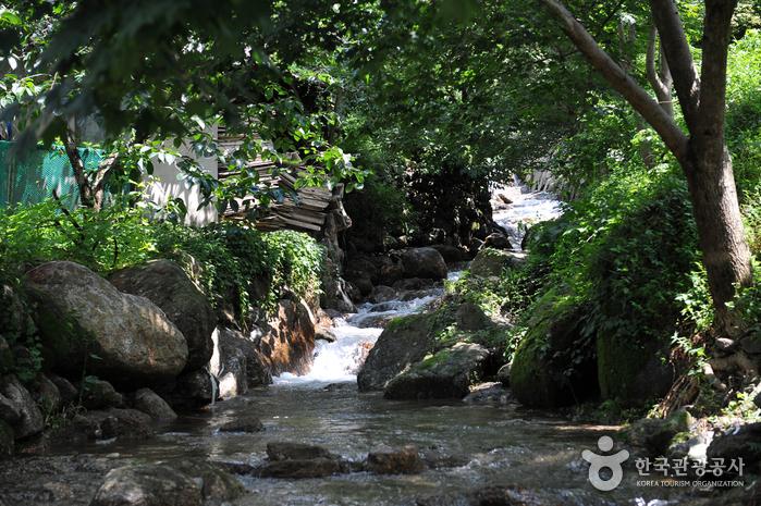 於峙溪谷(어치계곡)7