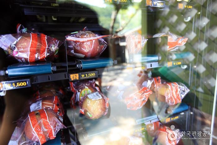 사과자판기