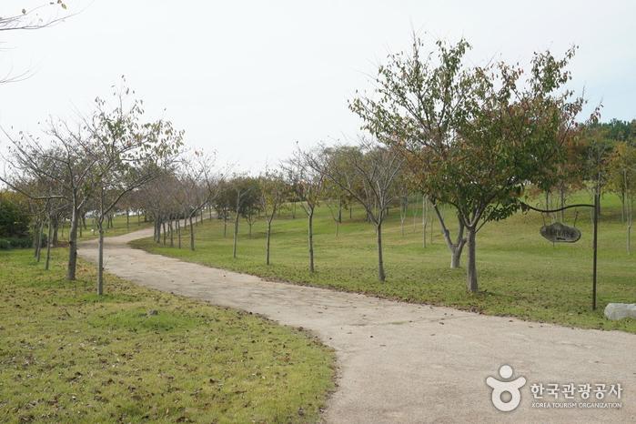 한마음공원
