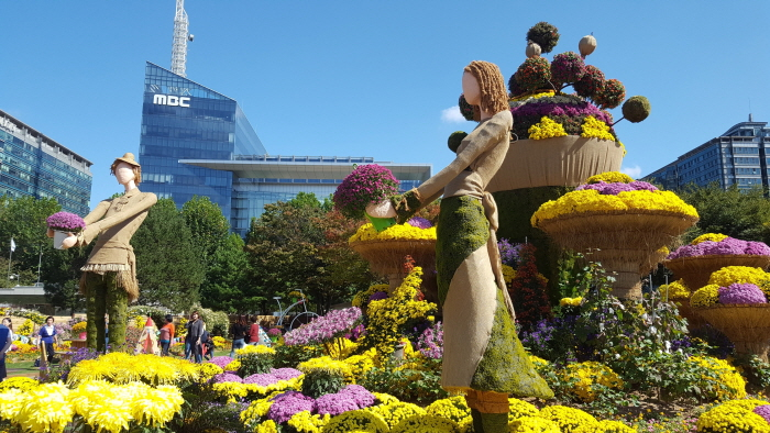 Goyang Autumn Flower Festival (고양가을꽃축제)