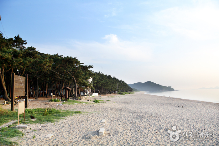 Strand Gosapo (고사포해변)