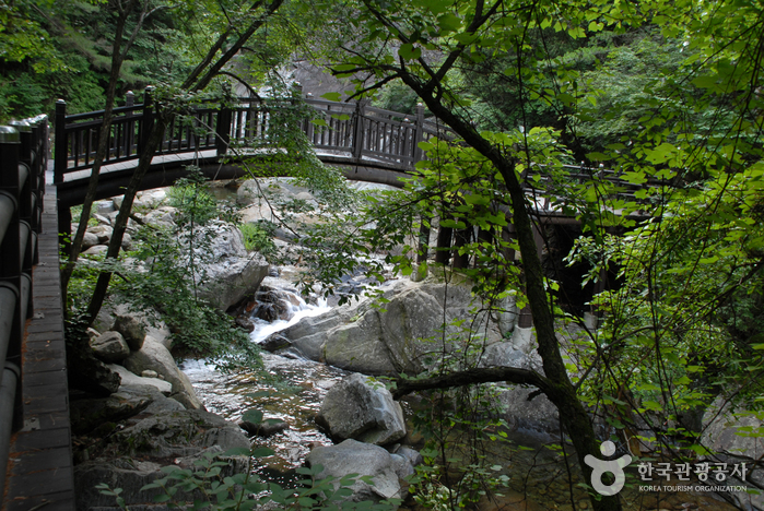 Sobaeksan National Park (Chungcheong Area) (소백산국립공원-북부)