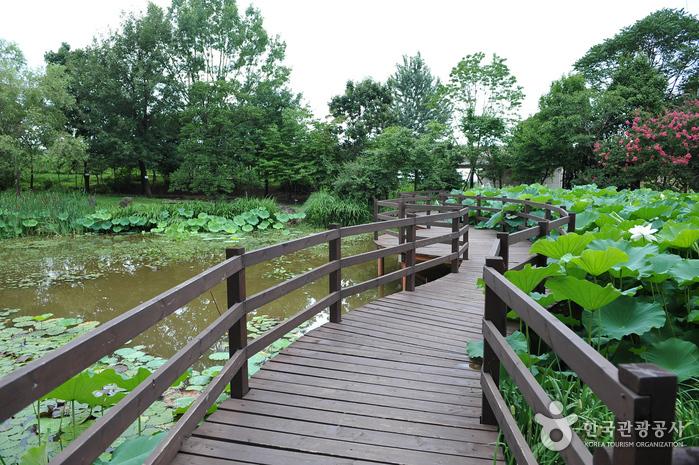 韓国道路公社樹木園(全州樹木園)(한국도로공사수목원(전주수목원))