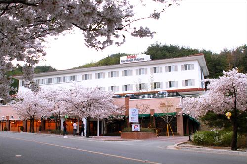 茵特博格酒店<br>(호텔인터불고팔공)