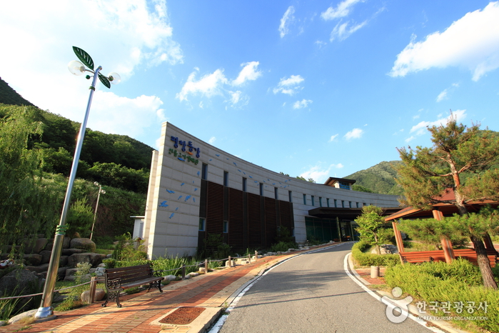 Pyeongchang Donggang Freshwater Fish Ecology Center (평창동강 민물고기생태관)