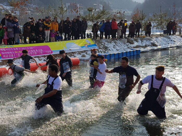 Hongcheon River Ginseng Trout Festival (홍천강 꽁꽁축제)