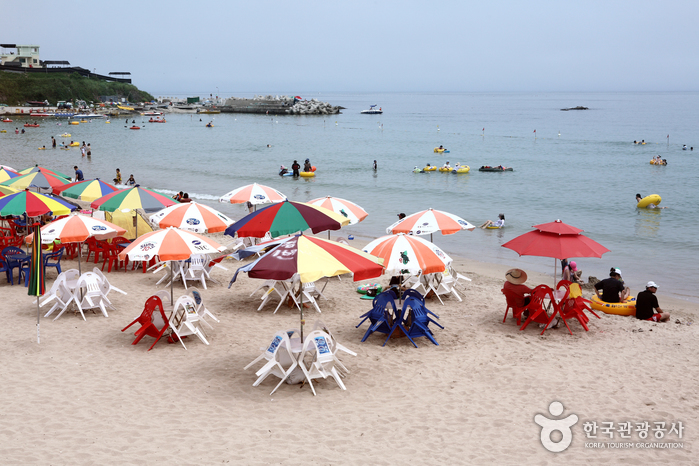 Guryongpo Beach (구룡포...