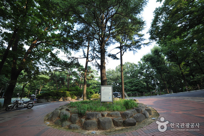 Sajik Park (Gwangju) (사직공원 - 광주)