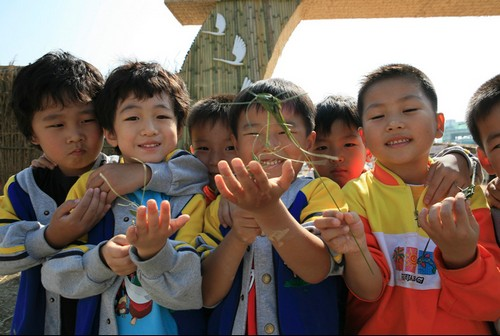 Suncheon Bay Reeds Festival (순천만갈대축제)