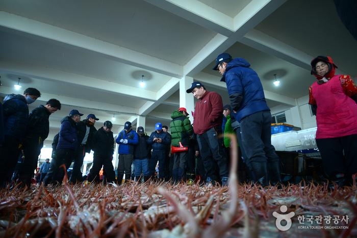 Uljin Snow Crab Festival (울진대게와 붉은대게축제)