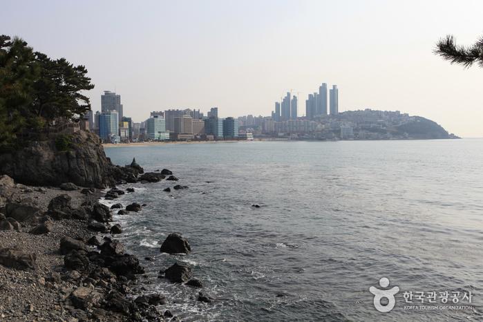 海云台冬栢岛해운대 동백섬