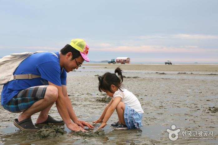 가족여행에 최적화된 여름 휴가지, 고창 동호해수욕장