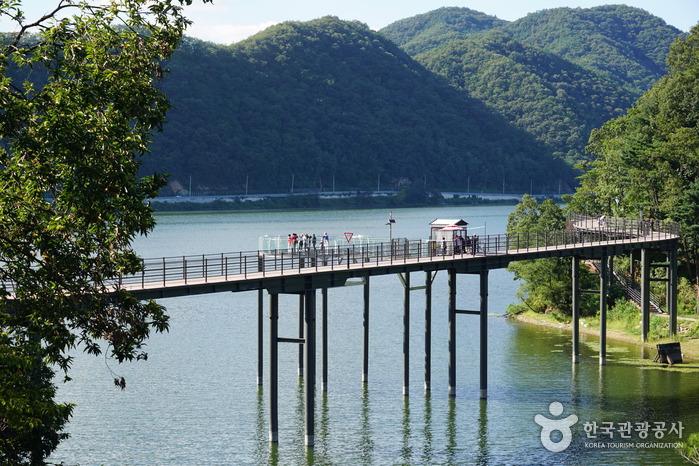 Uiamho Lake Skywalk (의암호 스카이워크)