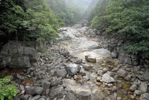 Sogeumgang Valley (오대산 소금강계곡)