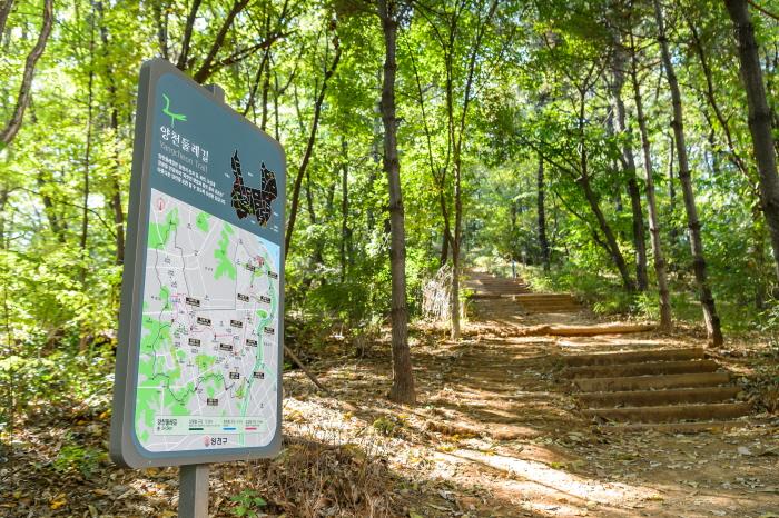 龍王山近鄰公園(용왕산근린공원)