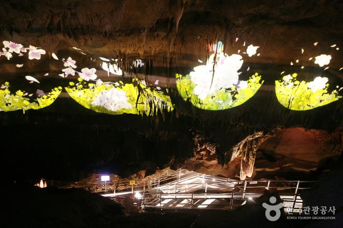 Höhle Cheongok (천곡천연동굴)
