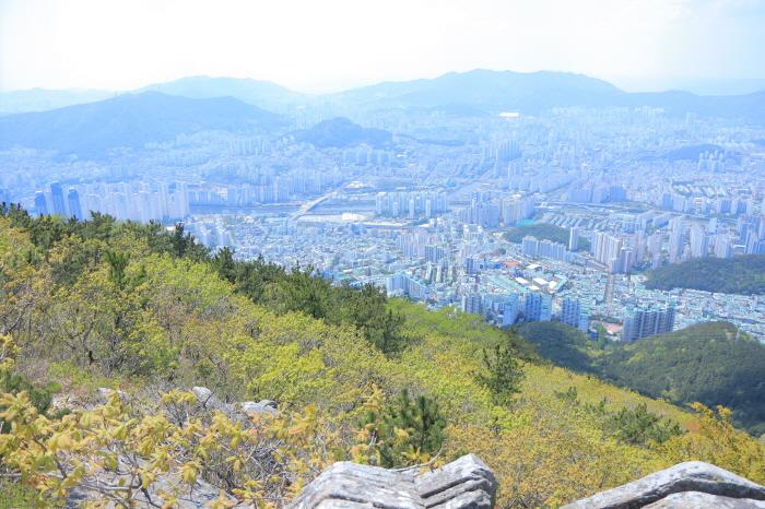장산 (부산 국가지질공원)