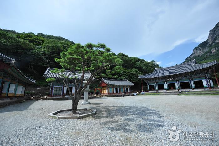 Baekyangsa Temple (백양사)