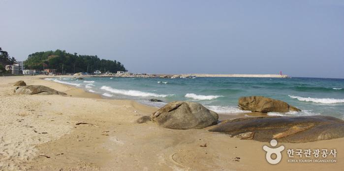 동산포해변