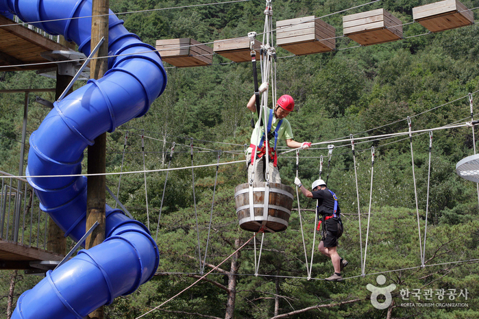 Cheongpung Land (Bungee Jump) (청풍랜드)