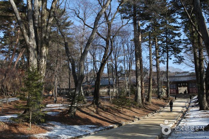 Tempel Haeinsa (해인사)