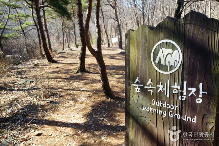 국립 용현자연휴양림