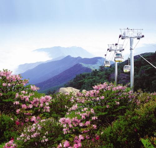 茂朱 徳裕山リゾート(무주덕유산리조트)