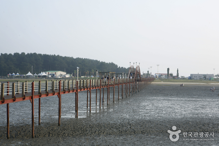Jjangttungeodari (Mudskipper) Bridge (짱뚱어다리)