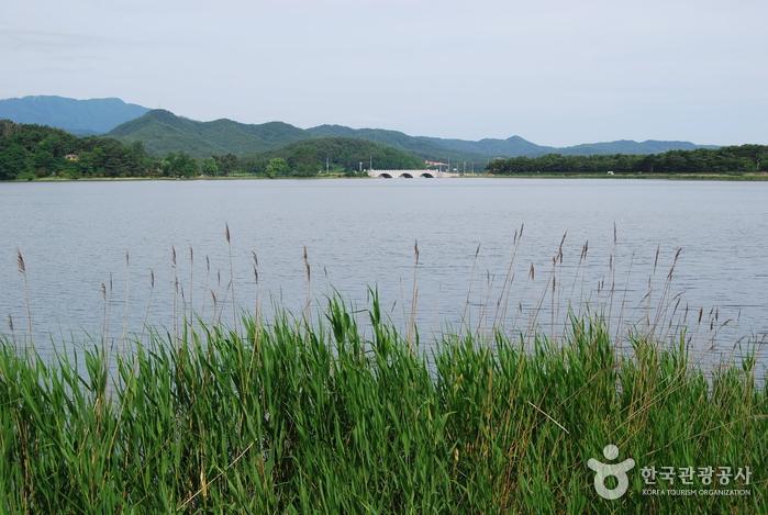 Озеро Хвачжинпхо (화진포)16