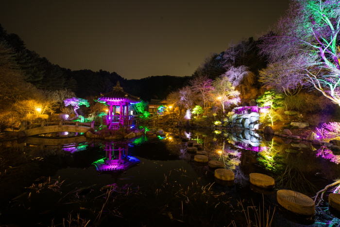 Lighting Festival at The Garden of Morning Calm (오색별빛정원전)